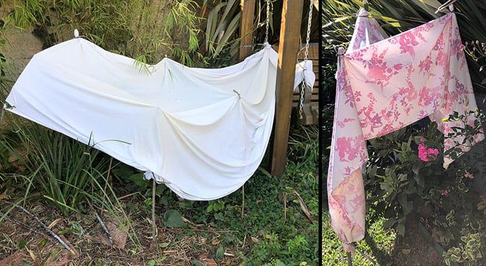 Plantas protegidas do frio com lençol
